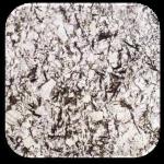 Splendor White Granite