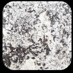 White Diamond Granite